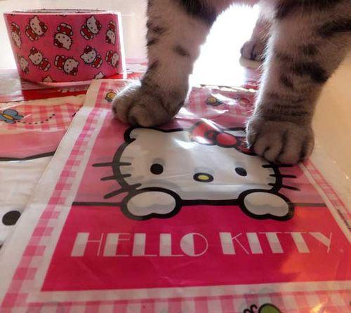HelloKittyBags2